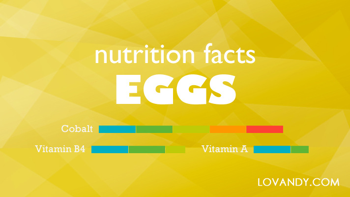 how much protein is in an egg