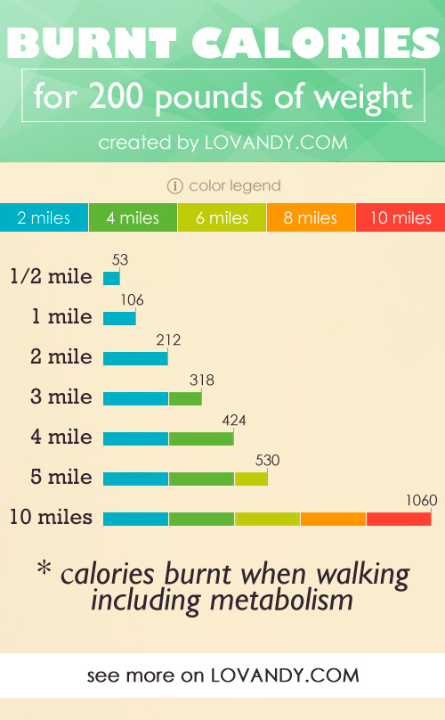 calories on a long walk