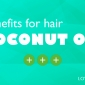can coconut oil help hair growth